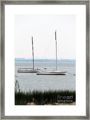 Sailboats In Battery Park Harbor Framed Print