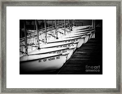 Sailboats In Newport Beach California Picture Framed Print