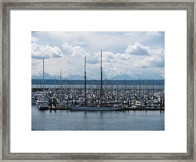 Sailboats In Seattle Framed Print by Steven Parker