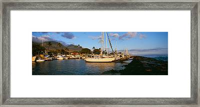 Sailboats In The Bay, Lahaina Harbor Framed Print by Panoramic Images