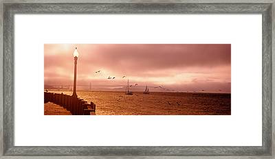 Sailboats In The Sea, San Francisco Framed Print by Panoramic Images