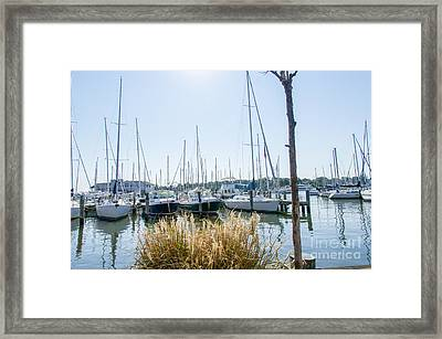 Framed Print featuring the photograph Sailboats On Back Creek by Charles Kraus