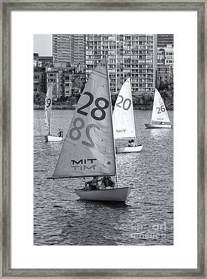 Sailboats On The Charles River II Framed Print by Clarence Holmes
