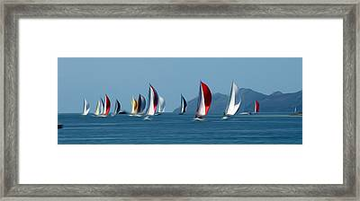 Sailboats Framed Print by Stefan Petrovici