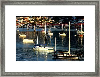 Sailboats Sunrise Framed Print by Tim Nielsen
