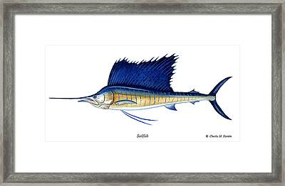 Sailfish Framed Print by Charles Harden