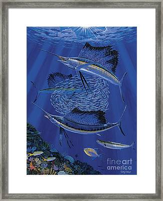 Sailfish Round Up Off0060 Framed Print by Carey Chen