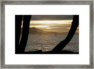 Sailing At Sunset On The Bay Framed Print by Robert Woodward