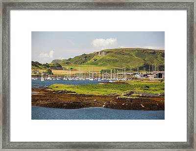 Sailing Boats Moored Off Kerrera Framed Print by Ashley Cooper