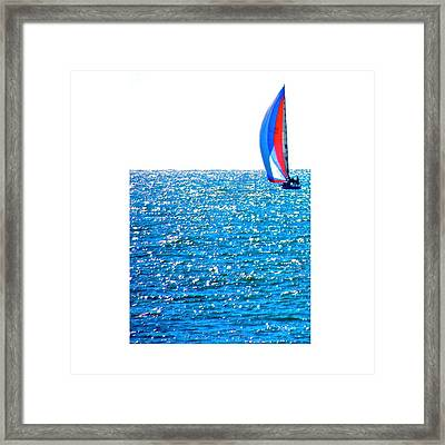 Sailing Framed Print by Brian D Meredith