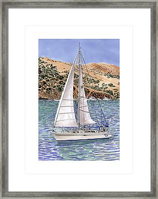 Sailing Catalina Island Sailing Sunday Framed Print