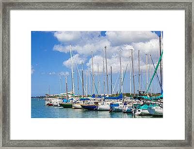 Framed Print featuring the photograph Sailing Club Marina 1 by Leigh Anne Meeks