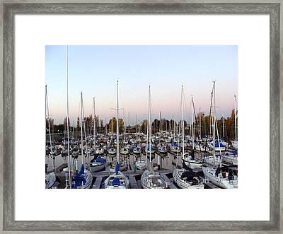 Sailing Club Marina Framed Print by Dee  Savage