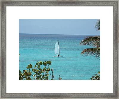 Framed Print featuring the photograph Sailing by David S Reynolds