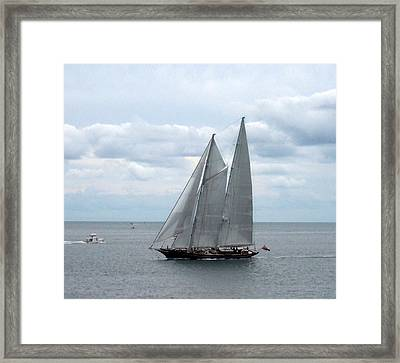 Sailing Day Framed Print by Catherine Gagne