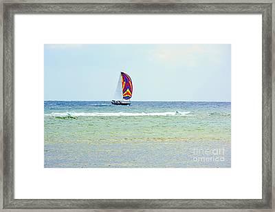 Sailing Day Framed Print by Darla Wood