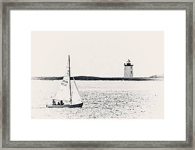 Sailing In Cape Cod Framed Print by Karol Livote