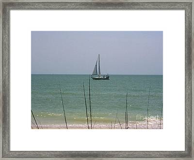 Framed Print featuring the photograph Sailing In The Gulf by D Hackett
