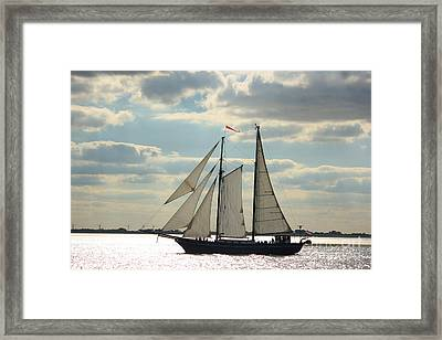 Sailing In The Sunset Framed Print