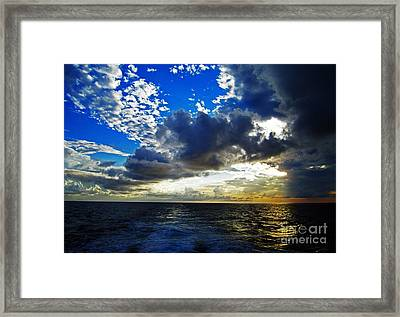 Sailing North Framed Print by Alison Tomich