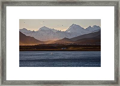 Sailing On The Beagle Channel Framed Print by June Jacobsen