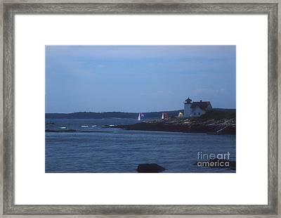 Sailing Regatta By Nubble Light Framed Print