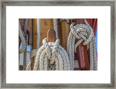 Framed Print featuring the photograph Sailing Rope 5 by Leigh Anne Meeks