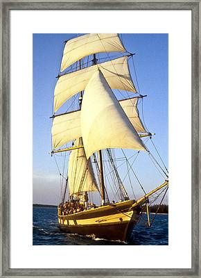 Sailing Ship Carribean Framed Print