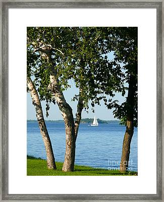 Sailing The Lake Framed Print by Jeanne  Woods