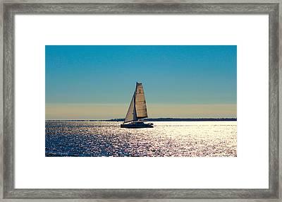 Sailing The Ocean Blue Framed Print by Debra Forand