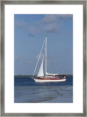 Sailing The Ocean Blue Framed Print
