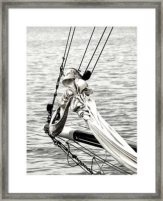 Sailing The Seven Seas Framed Print