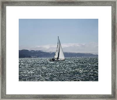 Sailing The Sf Bay Framed Print by Dee  Savage