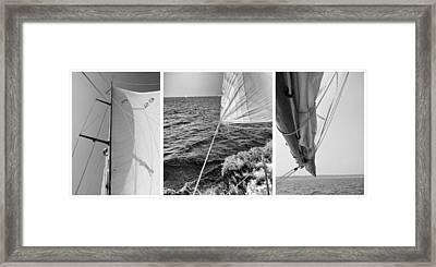 Sailing Three Panel Framed Print by Tony Grider
