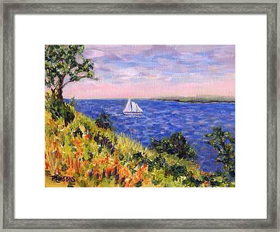 Sailing Through Belfast Maine Framed Print by Pamela Parsons
