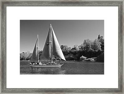 The Fearless On Lake Taupo Framed Print