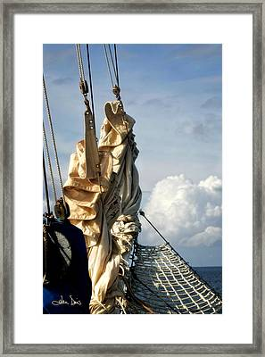 Sails Framed Print