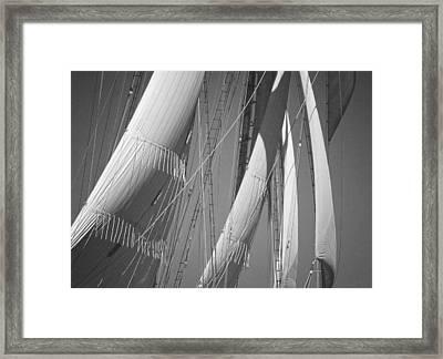 Sails Framed Print
