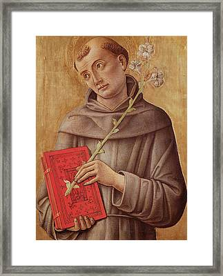 Saint Anthony Of Padua  Framed Print by Bartolomeo Vivarini