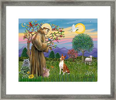 Framed Print featuring the digital art Saint Francis Blesses A Basenji by Jean Fitzgerald