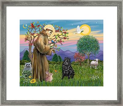 Saint Francis Blesses A Black Chinese Shar Pei Framed Print