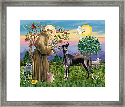 Saint Francis Blesses A Black Great Dane Framed Print
