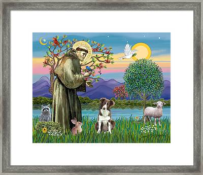Saint Francis Blesses A Brown And White Border Collie Framed Print