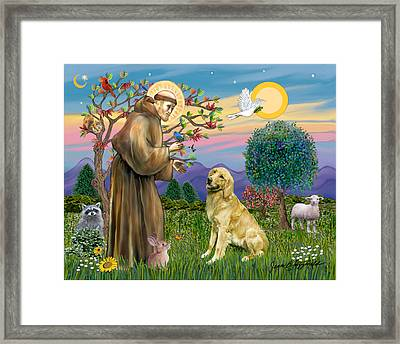 Saint Francis Blesses A Golden Retriever Framed Print