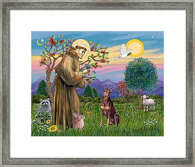 Saint Francis Blesses A Red Doberman Framed Print