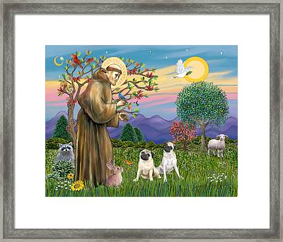 Saint Francis Blesses Two Fawn Pugs Framed Print