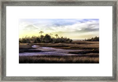 Saint Marks Wetland Sunset Framed Print by Lynn Palmer