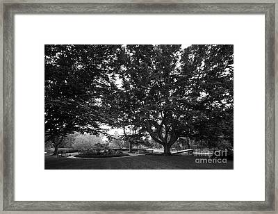 Saint Mary's College Landscape Framed Print by University Icons