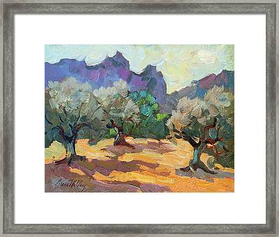 Saint Remy Olive Trees Framed Print