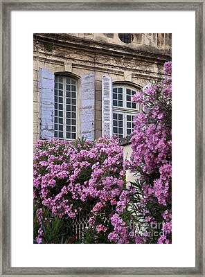 Saint Remy Windows Framed Print by Brian Jannsen